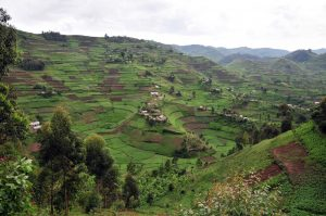 Uganda Hilly Areas