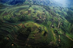 landscape-uganda