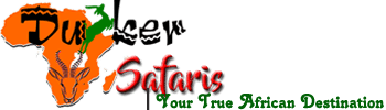 Duiker Safaris